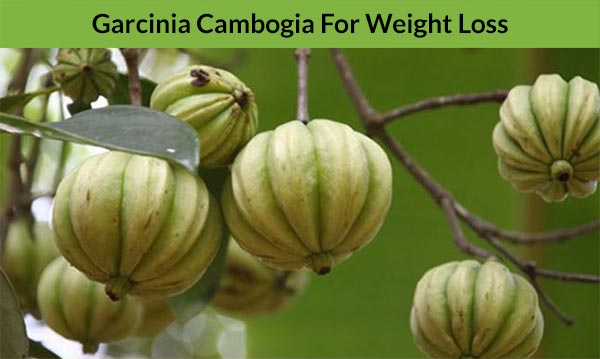 Garcinia Cambogia For Weight Loss!